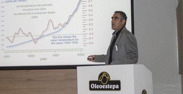 estrategias sostenibles olivar estepa
